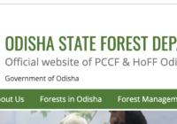 Odisha Forest Department