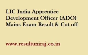 LIC ADO Mains Result 2019